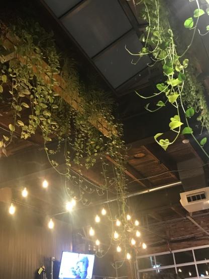 NobleBeast_Plants
